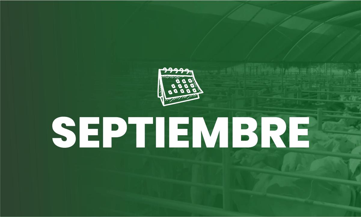 Calendario Eventos de septiembre