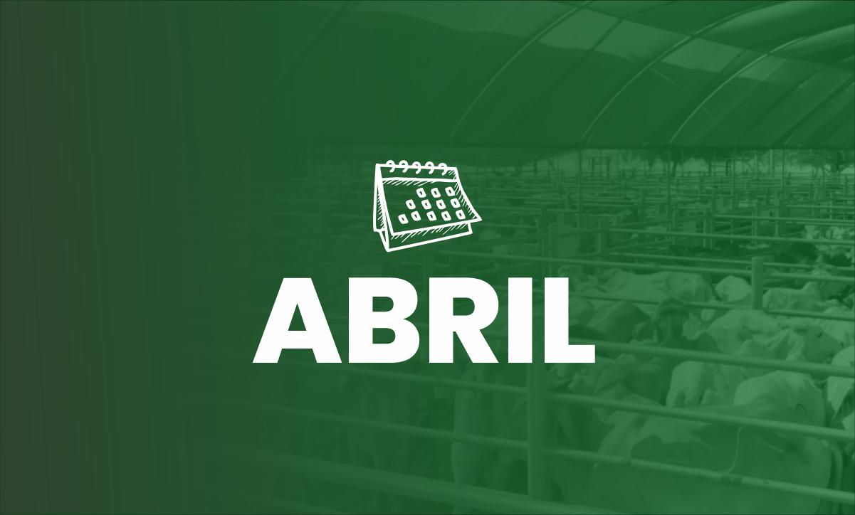 Calendario Eventos de abril