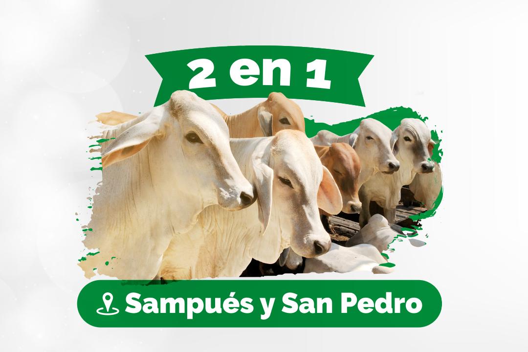 2 en 1 Sampués & San Pedro