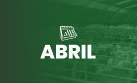 ABRIL__